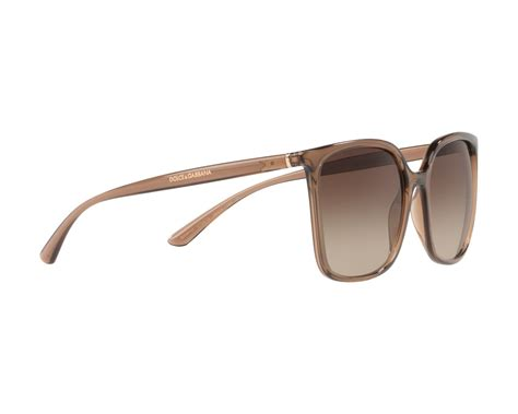 New Arrival Dolce Gabbana 17 dolce gabbana sunglasses dg 6112 315913 brown visionet