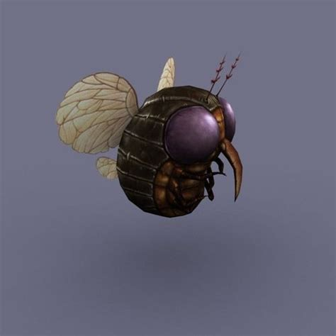 fliese rund fly insect 3d model ready max obj