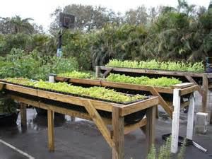 raised herb garden design photograph most productive herb