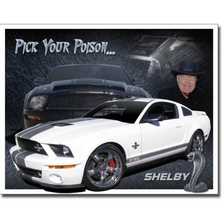 mustang shelby pics shelby mustang you pic
