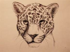 Drawings Of Jaguars Jaguar By Caughtinthehurricane On Deviantart
