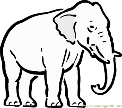 coloring pages of cartoon elephants free elephant outline coloring pages