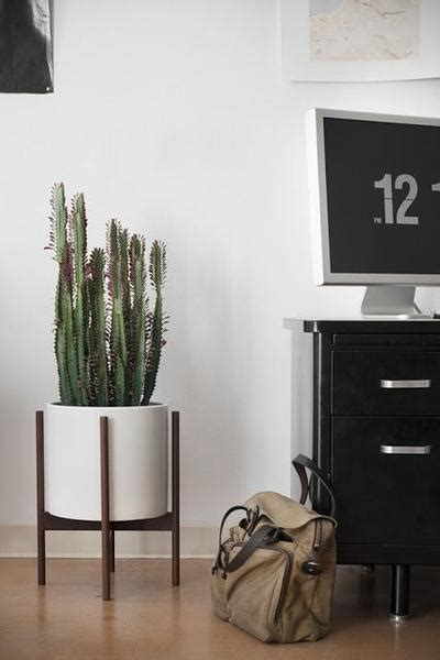 case study cylinder plant pot with stand modernica pot case study cylinder plant pot with wood stand by modernica