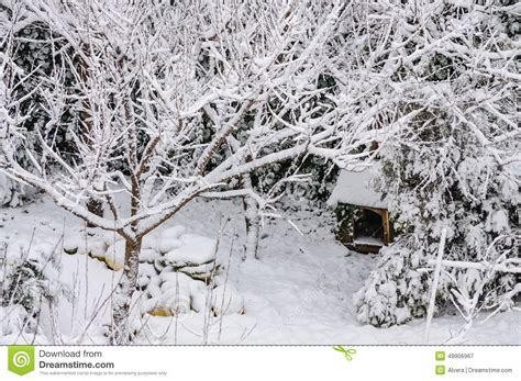 winterized dog house winter dog house snow fairytale background stock photo image 49906967