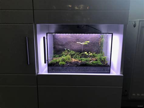 beleuchtung terrarium ewiges terrarium led beleuchtung terrariumbau info