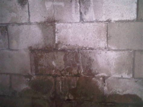 mold on basement walls cinder block concrete block foundation cinder block basement waterproofing