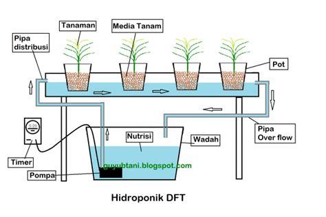 mengenal sistem hidroponik bertanam hidroponik เร มต น ปล กผ กไฮโดรโปน กส ต องทำความร จ กก นหน อย