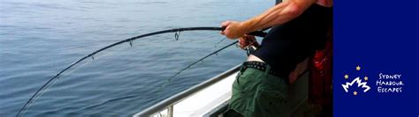 fishing boat charter sydney zane grey boat hire private fishing charter sydney harbour