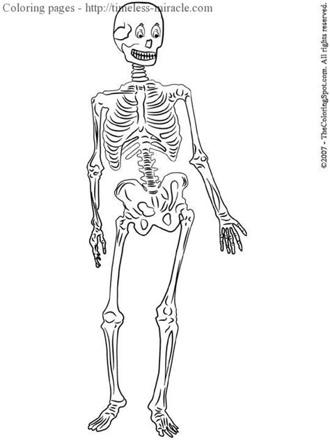 Skeleton Pictures To Print Coloring Pages Of Skeletons