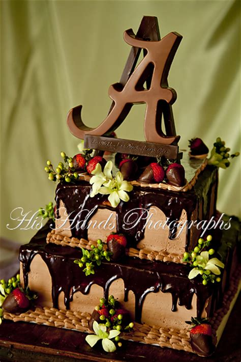 12 days of weddings day 4 the cake birmingham alabama wedding photographer his