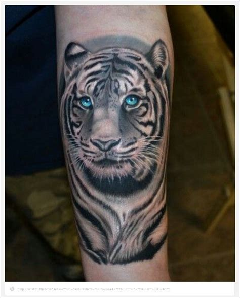 white tiger tattoo queenstown reviews tiger tattoo tattoo designs pinterest