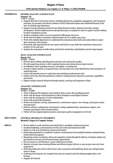 analyst consultant resume sles velvet jobs