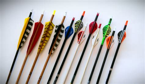 best archery how to choose the best archery equipment in 5 easy steps