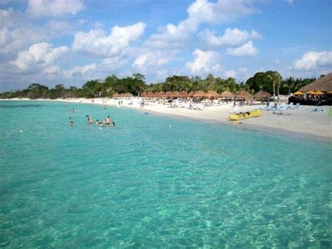 cozumel best beaches review of playa san francisco the best world s