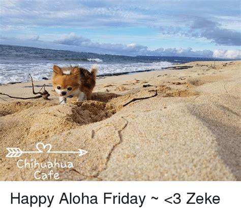 Happy Friday 3 by 25 Best Memes About Happy Aloha Friday Happy Aloha