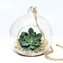 Glass Hanging Vase Hanging Glass Bauble Succulent Terrarium Kit By Dingading