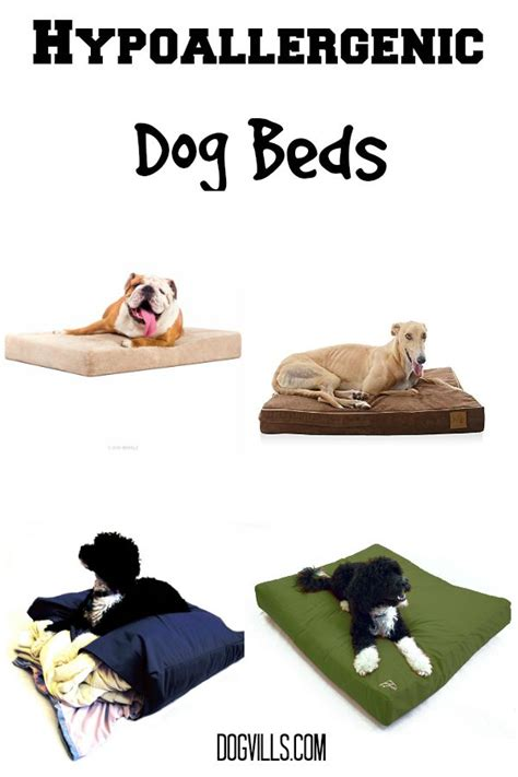 best hypoallergenic dog beds dogvills