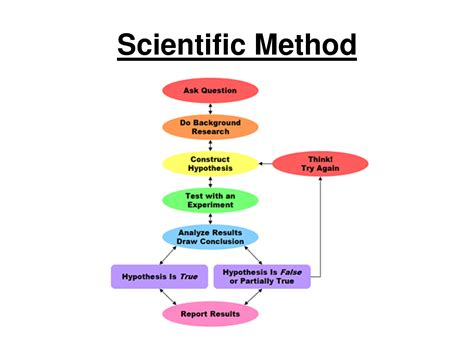 scientific method template political calculations exles of junk science