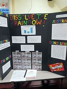 skittles color science fair project which liquid dissolves the skittle the fastest science fair