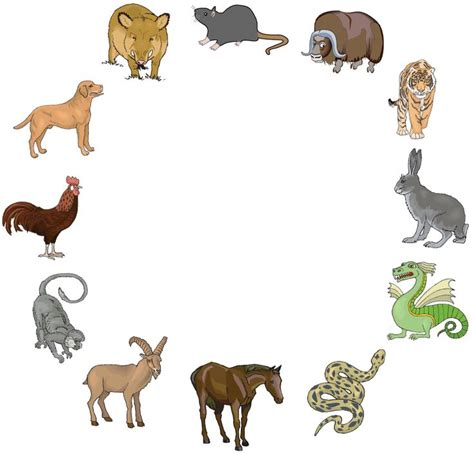 new year birth year animals new year find out your zodiac animal school