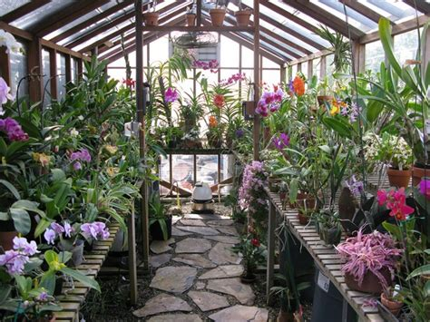 Small House Plans Southern Living 5 Reasons Why You Should Build Your Own Greenhouse Big