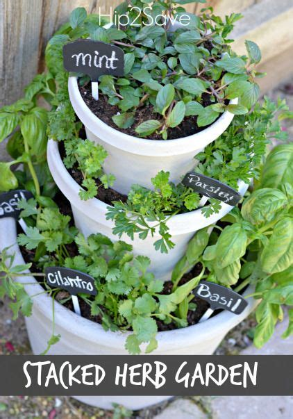 Small Home Herb Garden 25 Best Ideas About Small Herb Gardens On