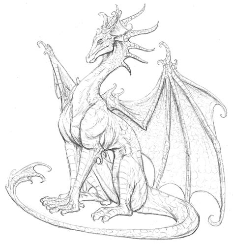 little dragon sketch by hibbary on DeviantArt