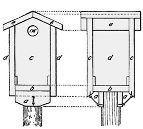 Western Bluebird House Plans Woodwork Birdhouse Plans For Bluebirds Pdf Plans