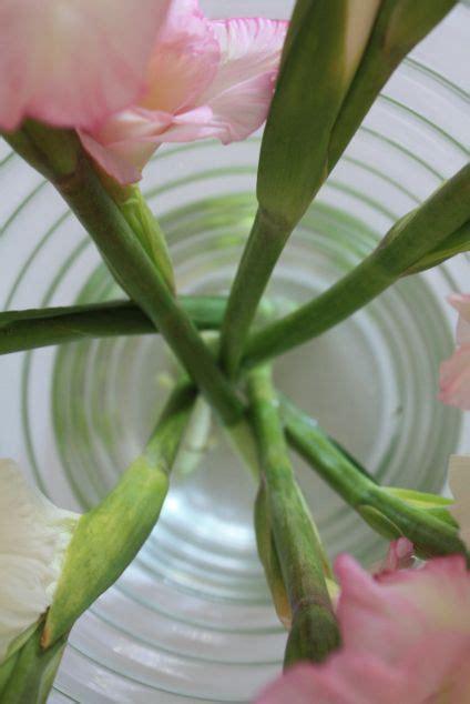 Blumen Die Lange Halten by Der Richtige Anschnitt So Halten Blumen In Der Vase