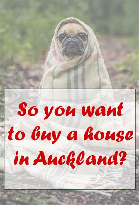buying house in auckland so you want to buy a house in auckland nz muse