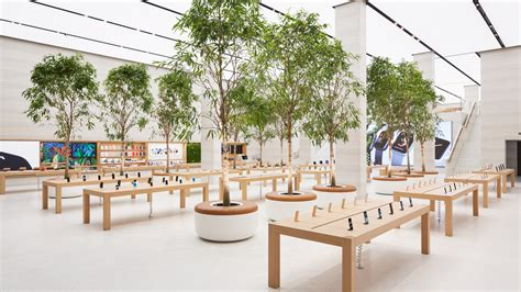 tree shop warehouse apple store in central gets sleek leafy rev