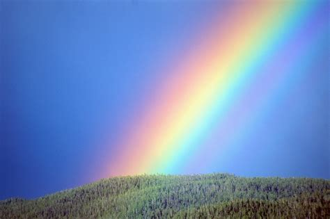 Rainbow Of the enchanting heaven rainbow of friendship