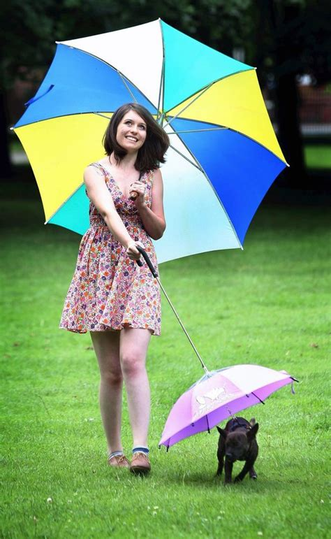 puppy umbrella umbrellas proving hit with pet owners during washout summer mirror