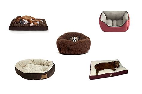 amazon dog bed top 10 dog beds plus the best amazon deals of the day celebuzz