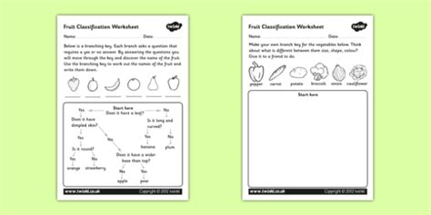 Classifying Fruits And Vegetables Worksheet