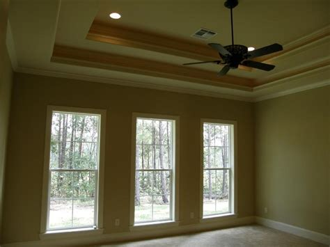 master tray ceiling with rope light accents