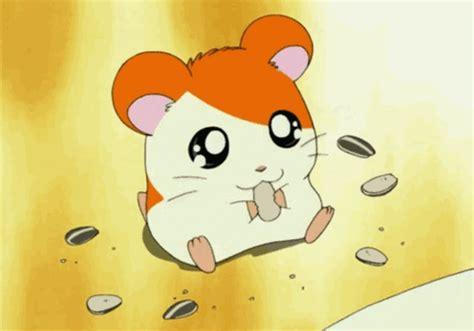 oblivion hamster gif wifflegif