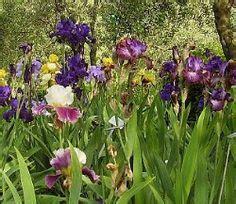 95 best italian gardens images on italian