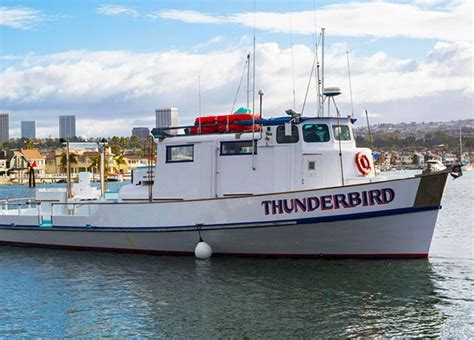 fishing charters san diego visitors boat rentals - Fishing Boat Rental Newport Beach