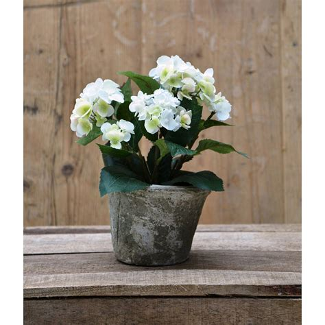 Hydrangea Planter by Silk Potted Hydrangea Plant By Funky Bunch
