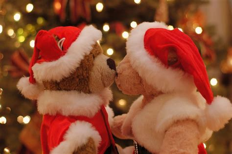 wallpaper christmas lovers wallpapernarium dos bonitos ositos de peluche con gorros