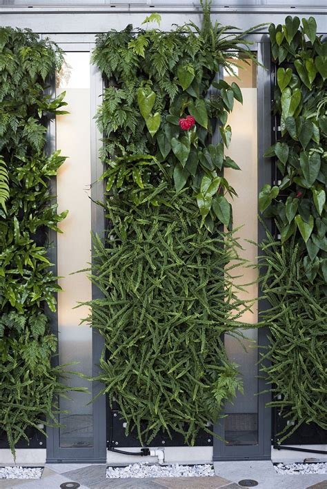 vertical garden how to make it its benefits and ideas