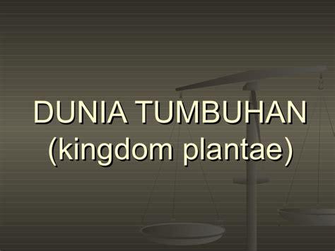 Kingdom Plantae Dunia Tumbuhan | dunia tumbuhan kingdom plantae