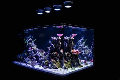 Saltwater Aquarium Led Lights Saltwater Aquarium Led
