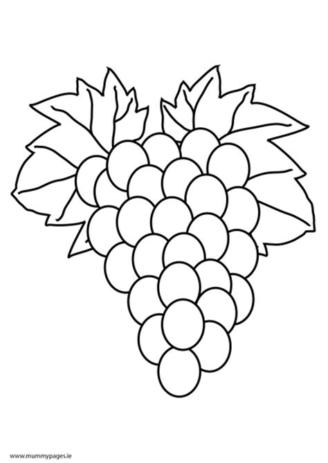 coloring page grapes free coloring pages of grape bunches