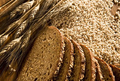5 nutrients in whole grains mizzou nutrition mythbusters myth multi grain and whole