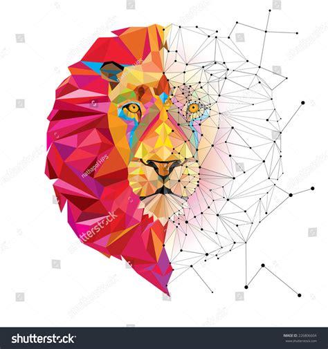 geometric pattern photography lion head geometric pattern star line stock vector