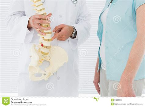 sectioning a patient mid section of a doctor explaining the spine to patient