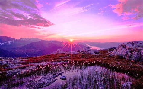 wallpaper hd free download 2014 free wallpapers purple sunset hd wallpaper 2014 download