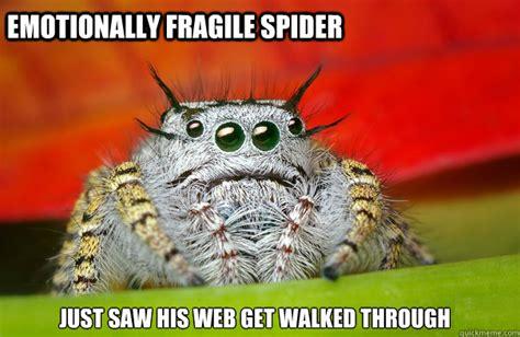 Sad Spider Meme - sad spider memes quickmeme